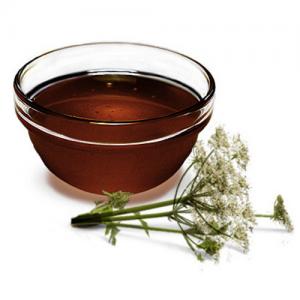 мёд дягилевый (Алтай)
